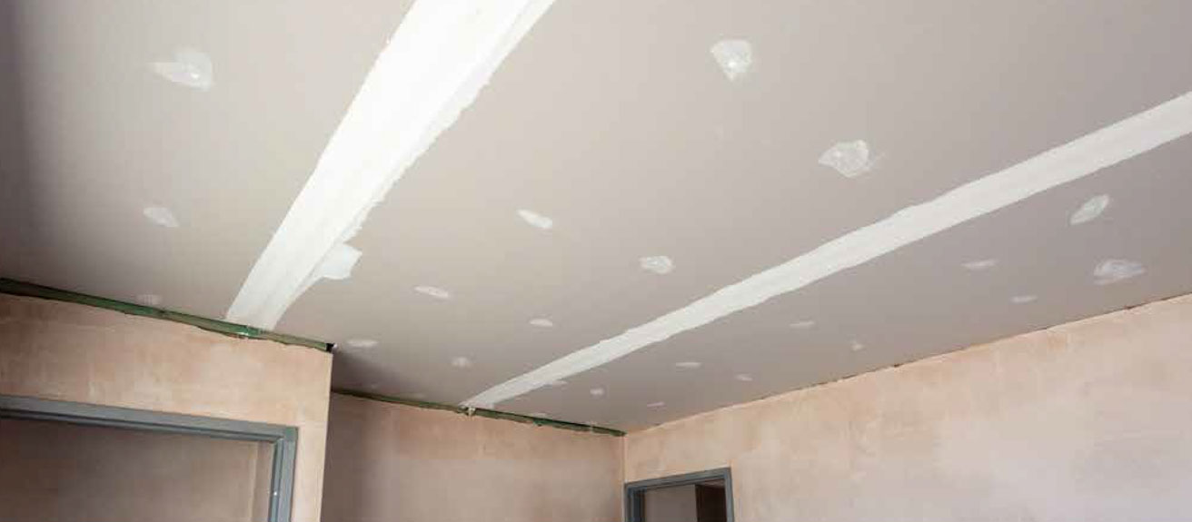 the-ceilings-and-cornices-pic-1