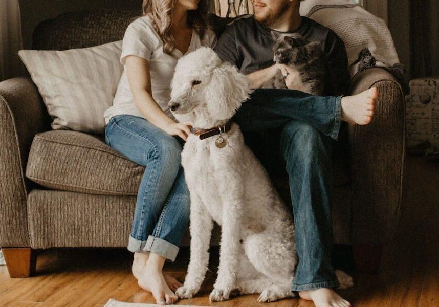 3-renting-with-pets-900x600-1-9828959